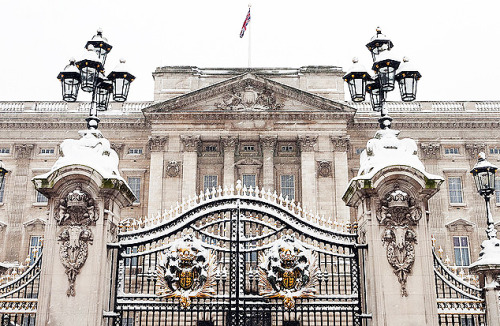 enchantedengland:     Snowy Buckingham Palace, London, England. Buckingham Palace is the primary residence of the royal monarch as well as an art gallery and tourist attraction. The Queen hosts annual Garden Parties, Receptions, and Banquets here as well, and when Queen Elizabeth starts her Tumblr to keep up with Barack Obama I am quite certain she will follow me. And THEN I will get invited to one of those Receptions, yes, yes I will.    I even know what to wear since I read Wikipedia! There is nothing like learning fashion from Wikipedia if you're the classy sort as I am. Anyhoo, if an evening event at Buckingham Palace is White Tie women wear a tiara, if they own one. (And who doesn't?) I must get mine out of its plush pink velvet, ivory pearl studded, satin-lined Louis Vuitton hat box and start polishing. (Alex Segre flickr)