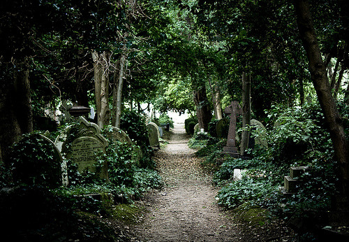 Highgate Cemetery (by (Benny))  Possibly my favorite place on earth.
