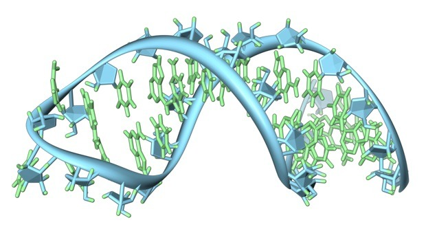 Level Up: Gamers Become Scientists By Competing To Design The Best RNA Molecules | Fast Company EteRNA, the new project from the brains behind FoldIt, wants to create  and study RNA molecules to help cure diseases. Turn out if you give a  gamer a chance, they can design RNA molecules far better than any  computer.