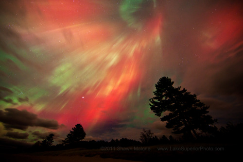 cwnl:  Aurora Display Leaves Skywatchers Spellbound A dazzling aurora light show amazed skywatchers across North America, from Canada to Arkansas, and other northern regions Monday night (Oct. 24), painting the sky with striking green and even rare red hues. Credit: Shawn Malone    why do women wear thong panties