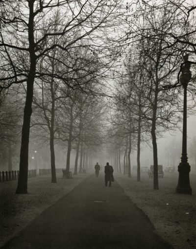 liquidnight:  Evelyn Hofer The Mall London, 1962 From Evelyn Hofer