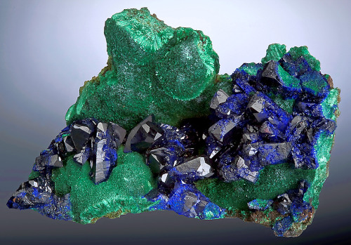 Azurite on Malachite from China