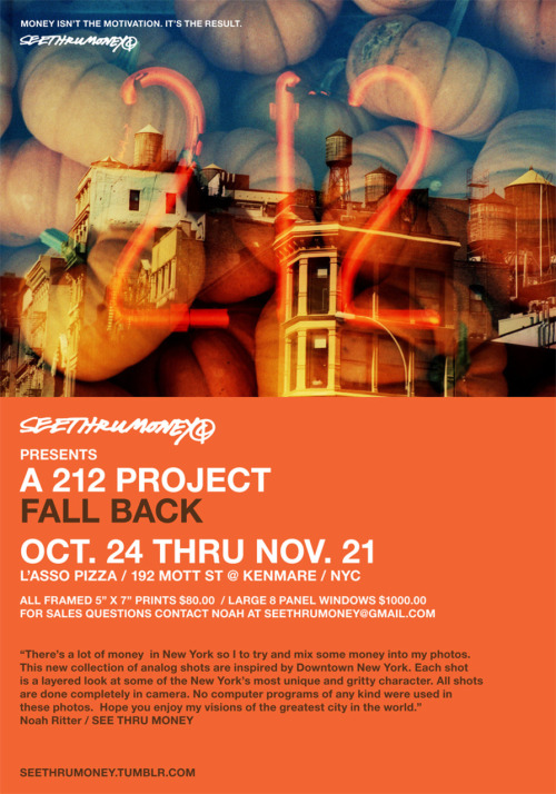See Thru Money presents… The 212 Project: Fall Back Now til Nov 21st 192 Kenmare @ Kenmare