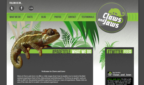 Work has been slow, but I have recently completed another project. A Website redesign for Claws and Jaws. http://www.clawsandjaws.co.uk/index.html