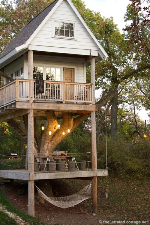 big-beautiful-world:  birchandwillow:  epic treehouse.  i would totes live there!