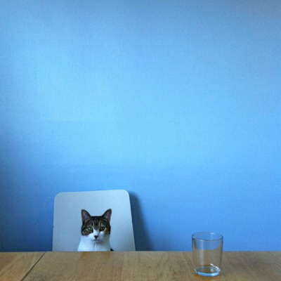 photojojo:  It's his blue phase. Photo by Hine Mizushima; via mllehazelwood