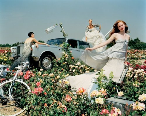Is this beautiful or what?  New photography by Tim Walker.  posted by Barbara at Chronologie Fine Vintage.