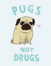 Drop the drugs! Hug a pug!