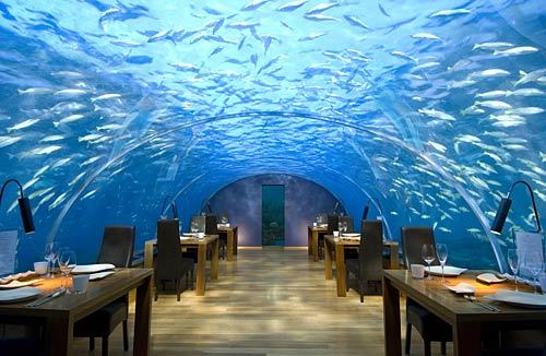 Ithaa Restaurant, Indian Ocean