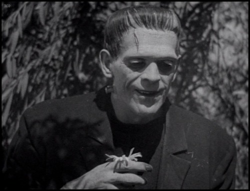 the-asphalt-jungle:  Boris Karloff - Frankenstein (1931) I made this a year ago - why does the one on the radar look **exactly** like it but just sharpened up a bit?  I've studied the other one, and yeah, it's the same. I need to start making my watermarks a lot more intrusive.  Too weird……….