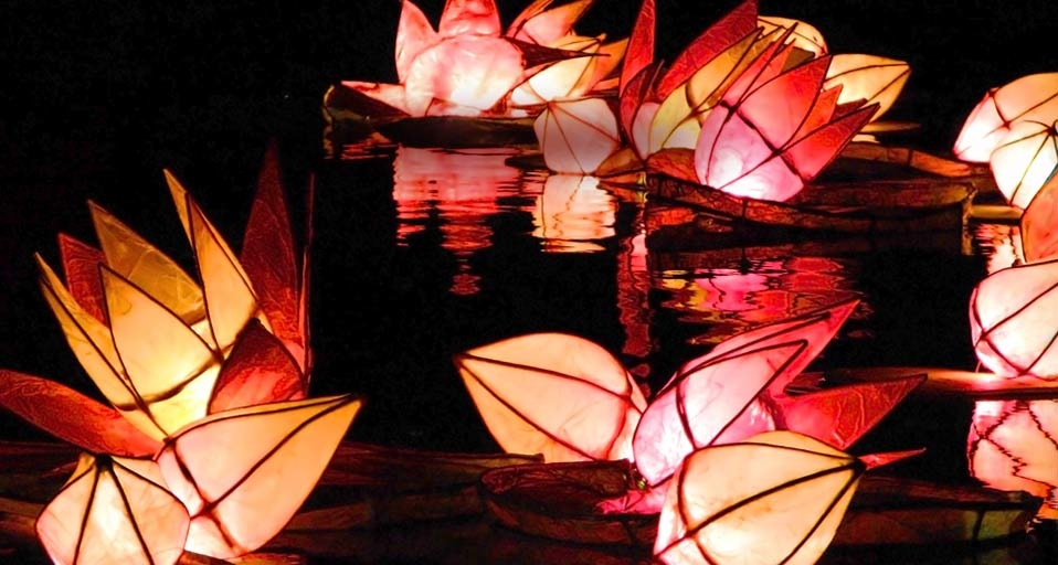 cco83mx:  Candlelit lanterns are set adrift during the Diwali celebrations in Trafalgar Square, London v/ Bing