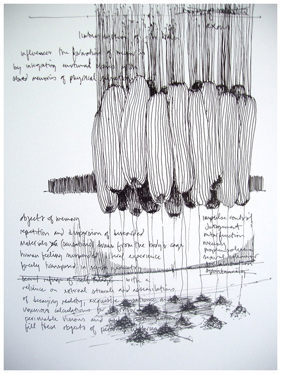 Kevin Townsend | 7knotwind & wrk-kevintownsend - Objects of memory (drawing). Ink on paper (2010