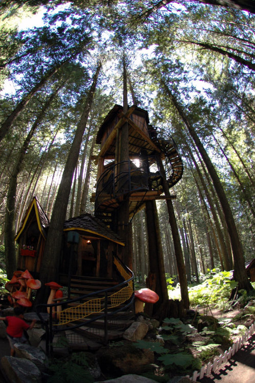 A fantasy treehouse, somewhere in Canada (via by fuzzy blue one)