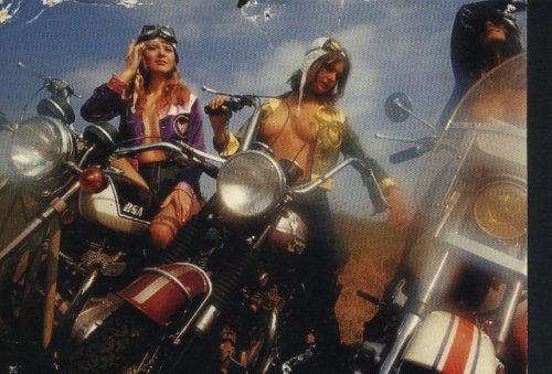 biker-babes:  Specialty Tumblers You Should Follow: sex on a plane watching you watching porn the most beautiful woman green eyes  gorean fantasy beautiful biker babes beach babes sacrilege