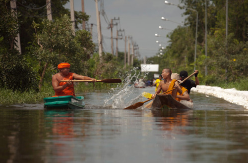 "Photo Series of the Day: Thailand has been inundated with monsoon rains since mid-July, resulting in the worst flooding the country has seen in 50 years. Athit Perawongmetha's heartwarming photo of Buddhist monks splash-fighting in floodwaters north of Bangkok is one of several powerful snapshots featured in the In Focus photo series, ""Bangkok Underwater."" [atlantic.]  the other pictures in the set are amazing. sad and beautiful at the same time."