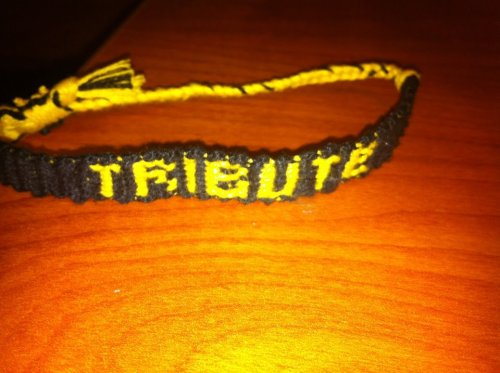 The bracelet I made for Michelle :)