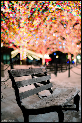 Zoo lights at the Lincoln Park Zoo, Chicago, Illinois (by Andy Marfia)