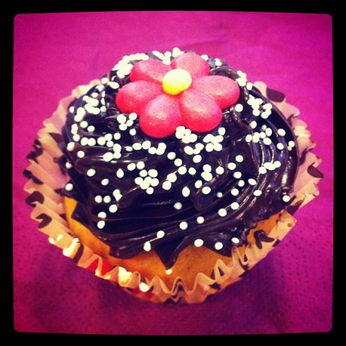 #cupcake #flower #candy #chocolate #muffin #urban #iphonephoto  #iphonephotography #iphone4 #instafood #food #desert #instagood #taste #good #cute #pink #purple #frosting #akademiet #cake #cute (Taken with instagram)