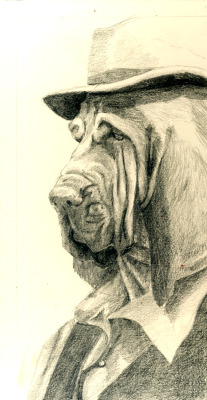 Bloodhound drawing for acrylic painting.