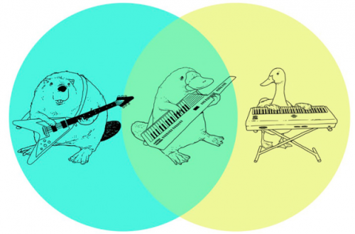 sunfoundation:  Venn diagram: Platypus playing a keytar  The word you're looking for is epic. From Tenso graphics, maker of amusing t-shirt sketches. [via]