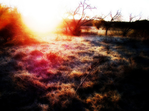 Nuclear Winter Morning on Flickr.