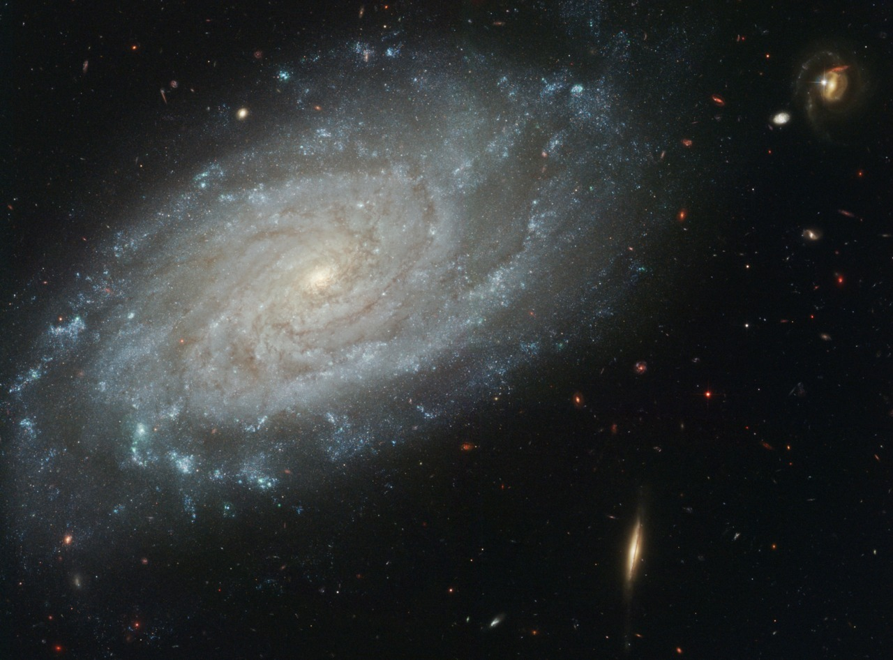 cwnl:  Spiral Galaxy NGC 3370 from Hubble Distance: About 100 million light-years away from Earth Is this what our own Milky Way Galaxy looks like from far away? Similar in size and grand design to our home Galaxy (although without the central bar), spiral galaxy NGC 3370 lies  toward the constellation of the Lion (Leo). Recorded above in exquisite detail by the Hubble Space Telescope's Advanced Camera for Surveys, the big, beautiful face-on spiral is not only photogenic, but has proven sharp enough to study individual stars known as Cepheids. These pulsating stars have been used to accurately determine NGC 3370's distance. Image Credit: NASA, ESA, Hubble Heritage (STScI/AURA); Acknowledgement: A. Reiss et al. (JHU)