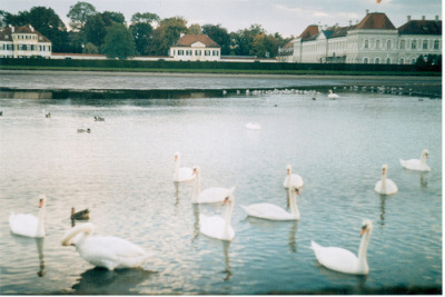 18augusts:  Nympenburg palace lake (by eat_a_jam)