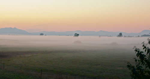 paulhehn:  Willamette Valley fog.