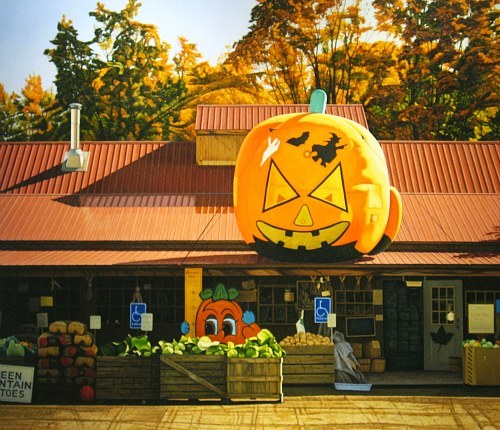 Ray Milici The Big Pumpkin 2010