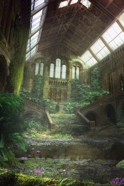 ilikethejavajive:  Natural History Museum post-collapse of civilization?  Looks totally Skyrim-tastic. Like a Spriggan matron is going to pop out of hiding and start throwing bees at you.