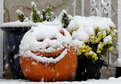 imwithkanye:  A jack-o-lantern is covered with snow during a rare October snowstorm that hit the Northern New Jersey region, Saturday, Oct. 29, 2011, in North Bergen, N.J. A classic nor'easter is moving along the East Coast and is expected to dump anywhere from a dusting of snow to about 10 inches throughout the region starting Saturday, a decidedly unseasonal date for a type of storm more associated with midwinter. (AP Photo/Julio Cortez)  Jack O'Snowman.