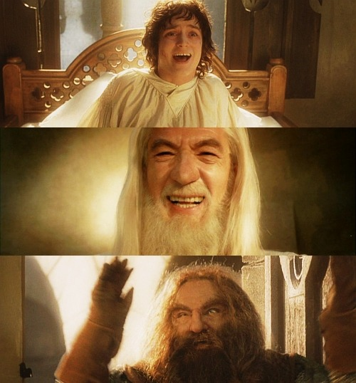 balongreyjoy:  30 days of Lord of the Rings. Day 17→ A scene that makes you cringe. #ok this scene is supposed to be bittersweet and happy and all but there was NO NEED to sit there and guffaw at each other for half an hour i mean help i'm drowning in cheese. #it's like frodo wakes up and gandalf's standing there and frodo's like 'gaaandaaaalf?' and gandalf's like 'HO HO HO' and frodo's like 'HEE HEE HEE' and they continue that for 2 minutes and then merry and pippin come in and jump on poor frodo's bed i mean isn't he injured that would kind of hurt but all the meanwhile gandalf's still there like 'HO HO HO' while merry and pippin beat up poor injured frodo and then gimli comes in and i mean look at gimli he just goes insane at the sight of frodo and goes 'WAY-HAY-HAY HO HO HA ZIPPA-DEE-DOO-DAH' and throws his hands up in celebration and then legolas comes in and does nothing because he's an elf and frodo doesn't seem to remember who he is and gandalf's still like 'HO HO HO' and then aragorn comes in with this creepy/sexy smile that makes him look like he's about to ravish frodo right there and then sam comes in and finally there's a sane moment but meanwhile your eyes have already started to bleed and you've started to wonder if this long journey has messed with their minds or WHAT