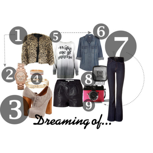 Faux Fur Leopard Jacket Michael Kors Watch Steve Madden Cirkus Booties Stella & Dot Bangles/ Eternity Band in Silver Graphic Tee's/Thermals Denim Button Down J Brand Jeans Diana Camera Black Leather Shorts GIMME GIMME GIMME