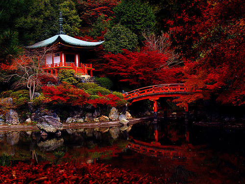 Sanctuary by M.Taniguchi