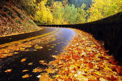 tripudios:  Historic Highway, Autumn Study #1 (by LiefPhotos)