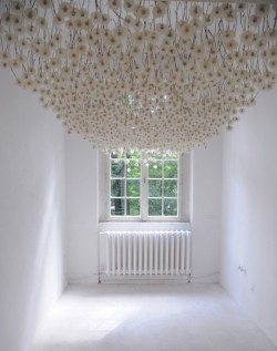 2,000 Suspended Dandelions by Regine Ramseier (via Colossal)