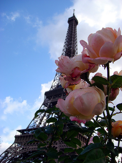 Eiffel Tower Again by Thelma Gatuzzo on Flickr.