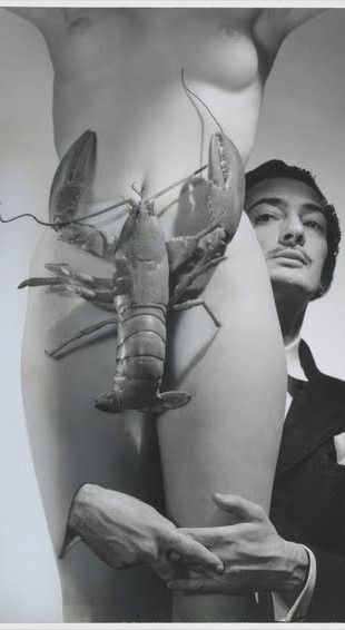 saraligari:  lobster by salvator dalì  maine tomorrow.