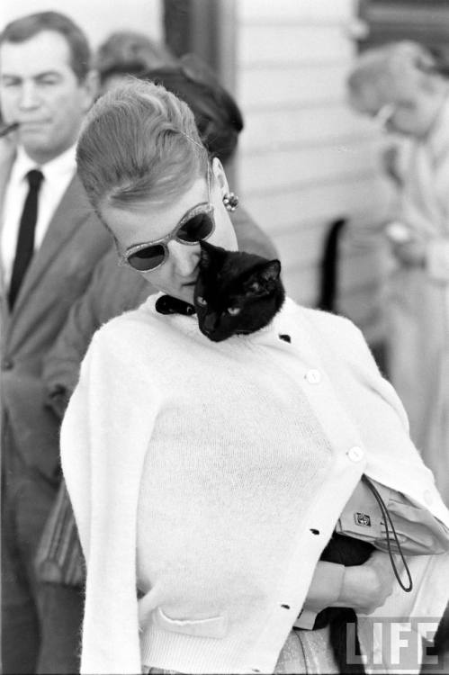 Ralph Crane, Black Cat Auditions In Hollywood, 1961. Source: LIFE Photo Archive, hosted by Google.