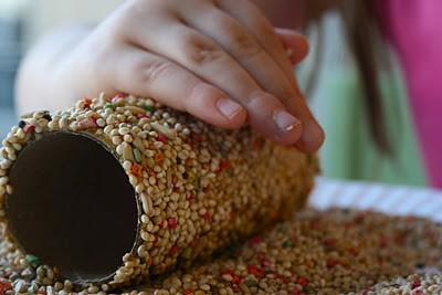 toilet paper tube, peanut butter, roll it in birdseed and slip it over a branch (via kinder knutsel ideeen / toilet paper tube, peanut butter, roll it in birdseed and slip it over a branch..)