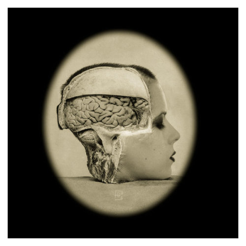 "3liza:  My oldie-but-goodie photomanip titled ""Brainmeat"" is available for purchase as a photo print, black mug or postcard on the DeviantArt print store. I did my research about DA prints and have read a lot of good things.  I think I can endorse these products. (via deviantART Shop Framed Wall Art Prints & Canvas 