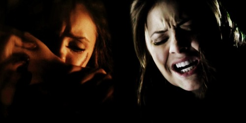 Katherine feeding off Elena's arm.