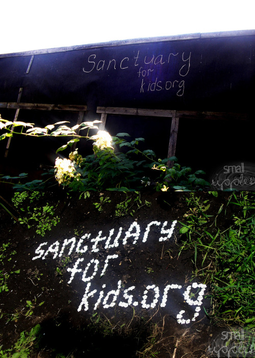 #Sanctuary For Kids - In the Garden - Moscow, Russia a. 6 августа (6 August 2011) b. Терин (@Terin_Kate  ) c. Россия, Воронеж (Voronezh, Russia)  d. Фотография была сделана во дворе моего дома. Я нашла пару мелков и решила расписать свой забор. В результате получить вот это. (The photo was taken in the courtyard of my house. I found a couple of crayons and decided to paint on the fence. As a result, get this.) фотография была сделана во дворе моего дома. Там растут цветы, и их лепестки осыпаются, я их собрала и стала выкладывать слова на земле. Вот, что получилось. (photo was taken in the courtyard of my house. They grow flowers and the petals fall off, I collected them and began to spread the word on the ground. That's what happened.) _________________________________________________________ To learn more about Small Ripples please visit here smallripples.wordpress.com To learn more about the amazing charity Sanctuary For Kids please visit their website www.sanctuaryforkids.org