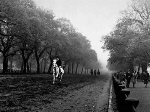 m3zzaluna:  Rider on horseback in hyde park, 1940 photo by Bill Brandt  (gallery)