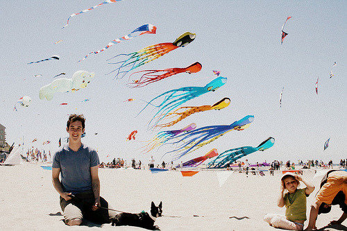 lifeinafilmcanister:  Lincoln City, OR Kite Festival (by Lady Reynolds)