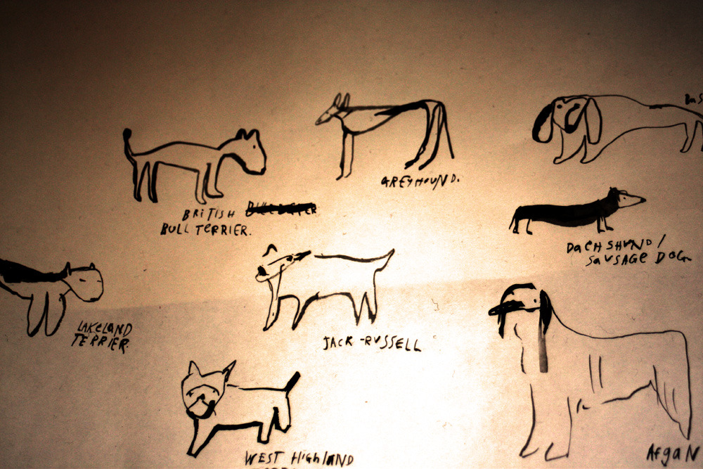 Illustrated dogs. Of varying varieties.