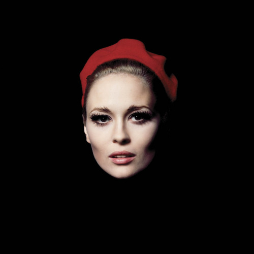 hollystair:buttondownmoda:Faye Dunaway.