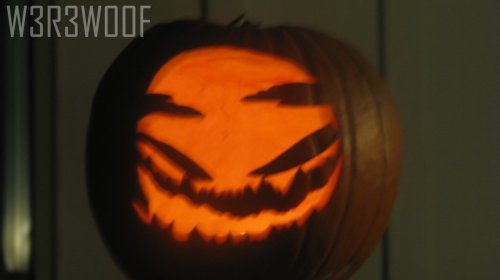 My second pumpkin for 2011. :) I only got a second one because more pumpkins means more seeds. <3The eyes drooped down, but what the hell… I don't really care. :/