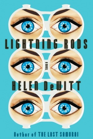We review Helen DeWitt's Lightning Rods.