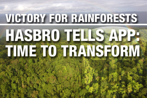 greenpeaceusa:  Thanks to all of YOU who have taken action, Hasbro had adopted a new paper policy that will save forests!  Please click LIKE and REBLOG to celebrate this victory for Indonesia's rainforests and the Sumatran tigers that live there!Then check out this blog by Greenpeace Forest Campaigner, Rolf Skar, on why this victory is so important.